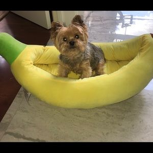 Nandog Banana bed